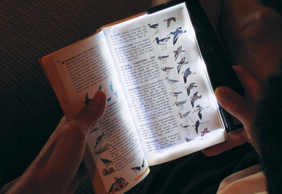 led book light with rechargeable battery sharper image. Black Bedroom Furniture Sets. Home Design Ideas