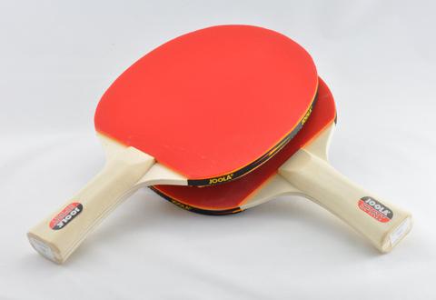 Ping Pong Paddle And Ball Set Sharper Image