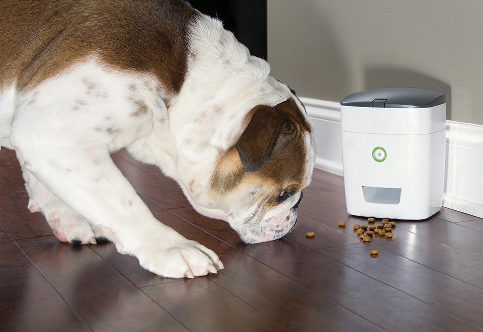 Remote Control Dog Treat Dispenser